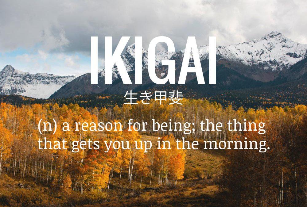 ikigai  u751f u304d u7532 u6590  a reason for being u2026    u2013 sennin